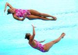 http://img199.imagevenue.com/loc228/th_43177_diving_world_champs_shanghai_2011_037_122_228lo.jpg