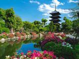 Wallpaperi Th_34794_Toji_Temple2_Kyoto5_Japan_122_599lo