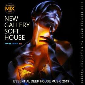 VA - New Gallery Soft House 2019 (2019)